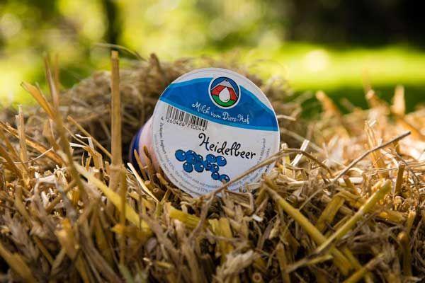 Diers Joghurt Heidelbeer - 250g - zum Frühstück