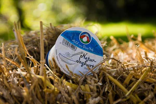 Diers Joghurt Natur 3,8% - 250g - zum Frühstück